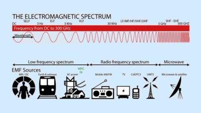 Health effects of Radiofrequency Electromagnetic Fields (RF EMF)